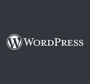 We are Wordpress<br />Website Experts
